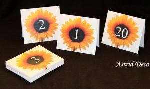 Numar masa - Floarea soarelui