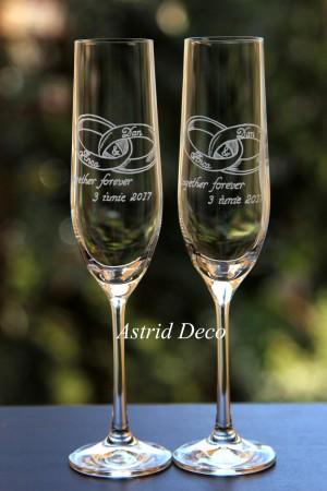 Pahare de Cristal - Miri- gravate manual pg64
