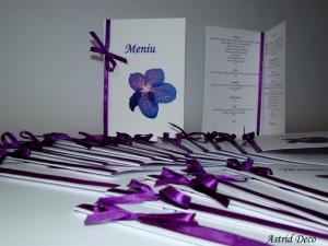 Meniu - Orhidee Vanda