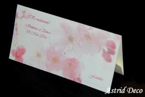 Plic bani - flori de cires